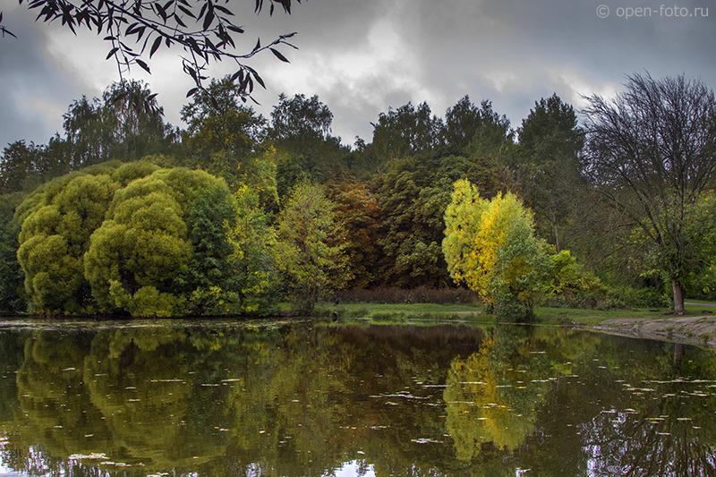 Измайловский парк рядом с фотошколой OPEN FOTO, Москва