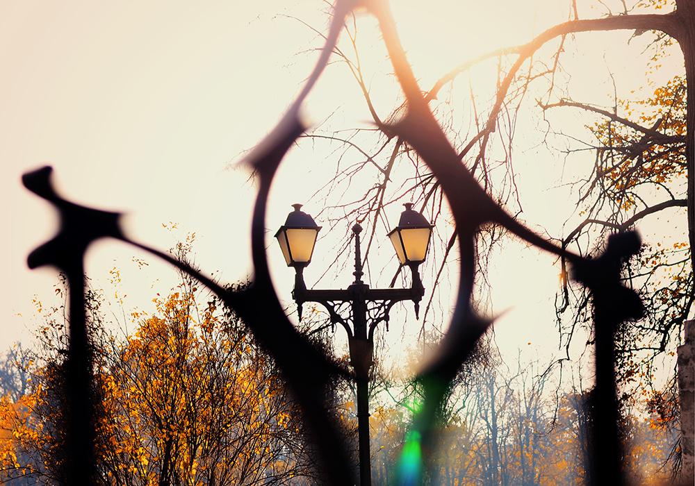 Автор фото - Амалия Усикян