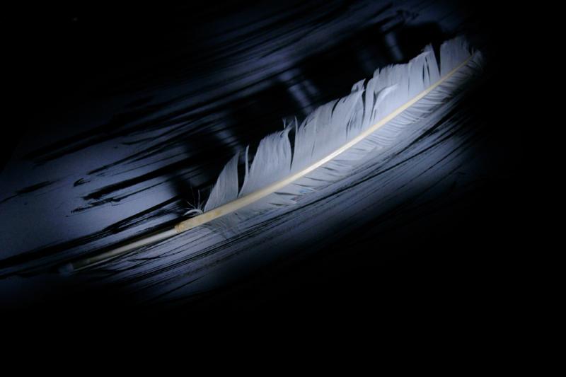 Мастер-класс Школы фотографии OPEN FOTO по технике «световая кисть». Автор фото - Маргарита Бочкарева
