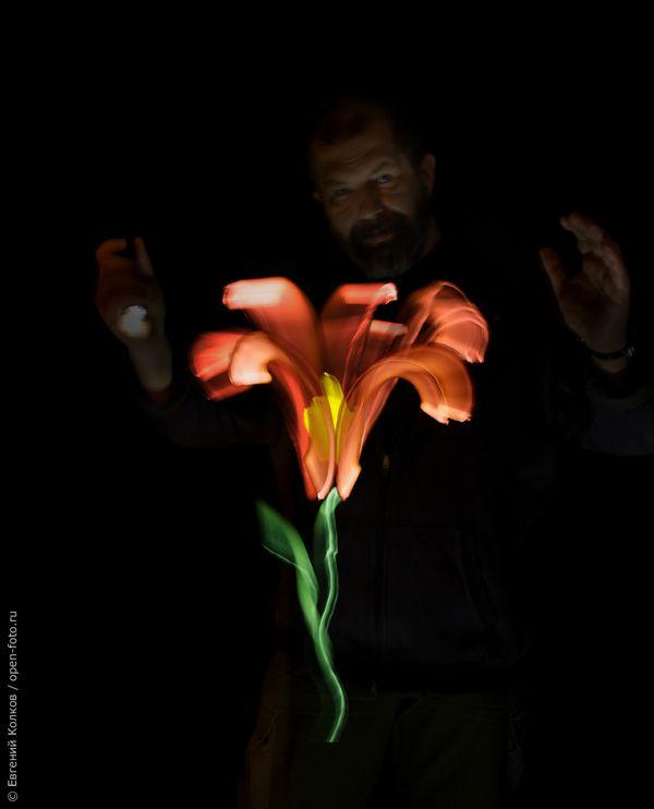 Цветок, нарисованный светом. Автор фото - Евгений Колков