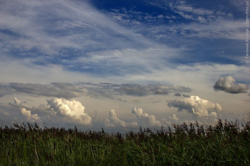 На озере Плещеево. Автор фото - Евгений Колков