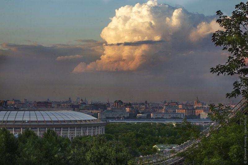Воробьевы горы. Фото Евгения Колкова