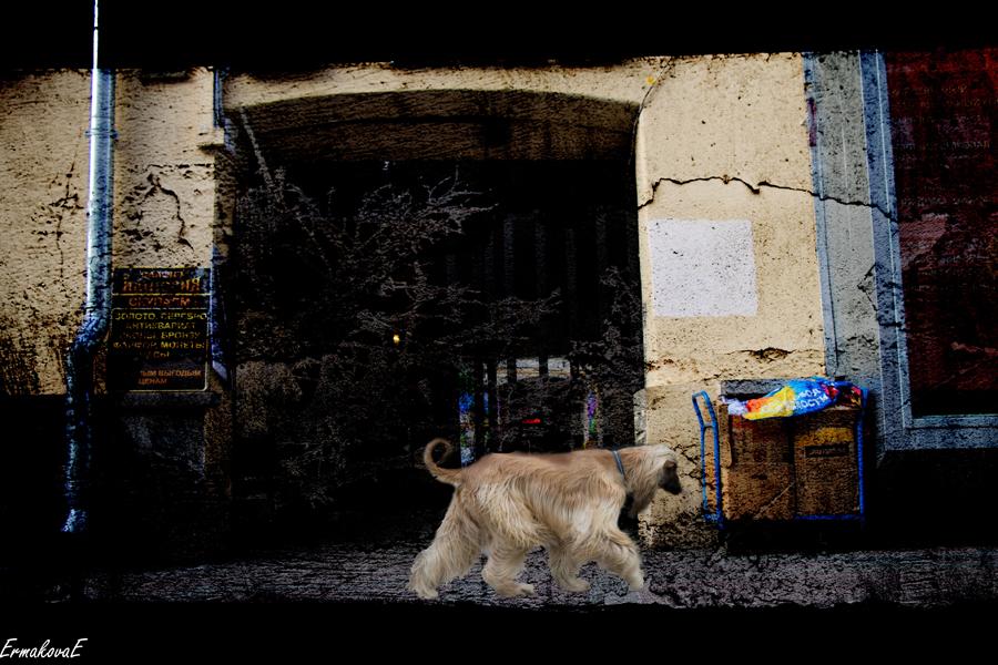 Арбат в стиле гранж. Фото Елены Ермаковой