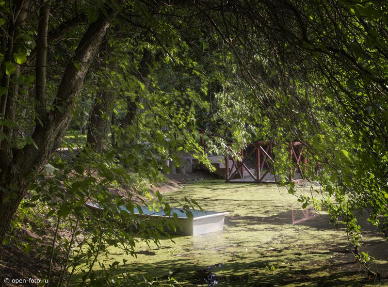 Аптекарский огород. Фото Евгения Колкова