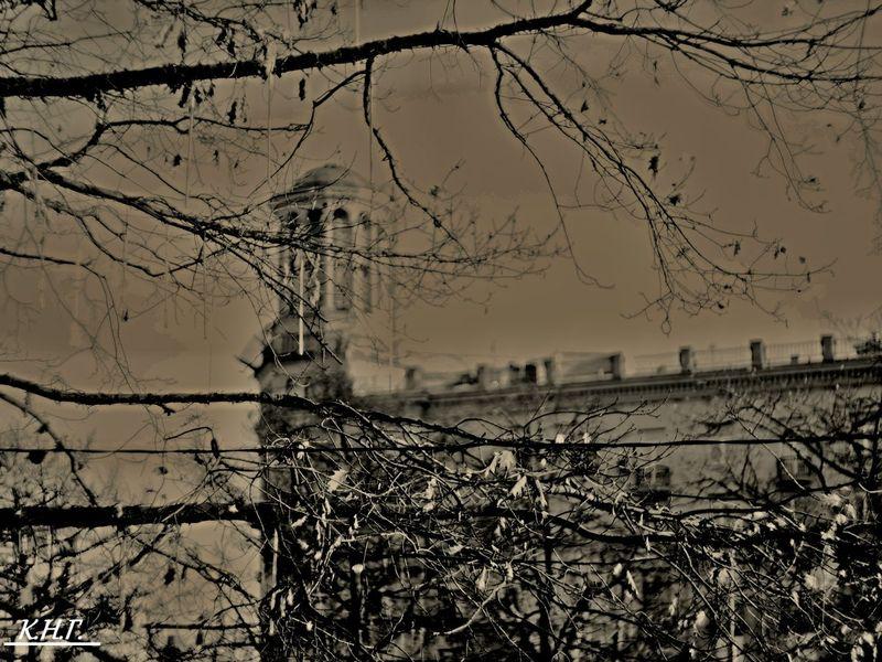 Фотопрогулка OPEN FOTO «Графика московских бульваров». Фото Николая Короткова (Дарка)
