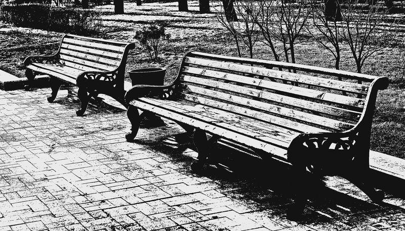 Фотопрогулка OPEN FOTO «Графика московских бульваров». Фото Марины Ремезовой
