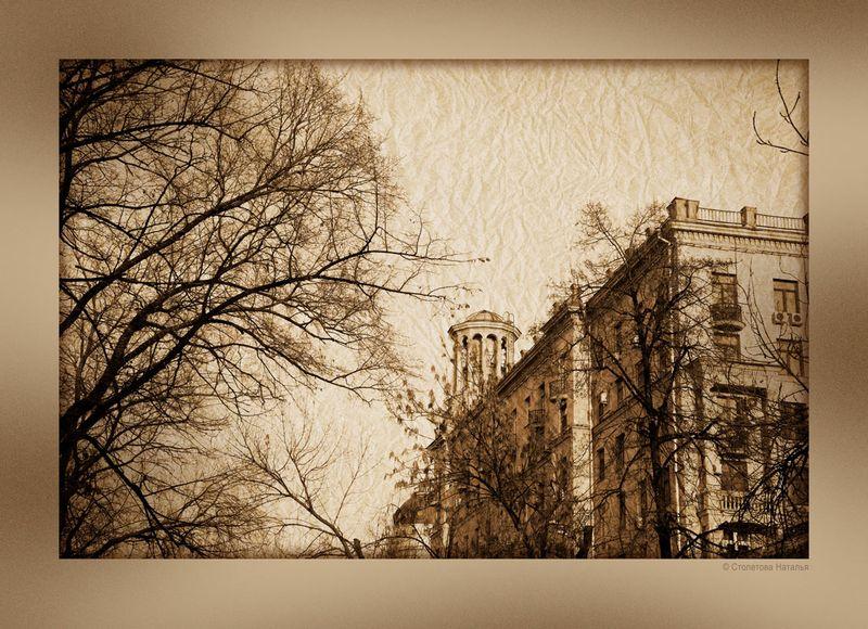 Фотопрогулка OPEN FOTO «Графика московских бульваров». Фото Натальи Столетовой