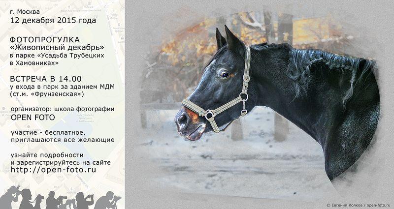 Афиша фотопрогулки Школы фотографии OPEN FOTO «Живописный декабрь»