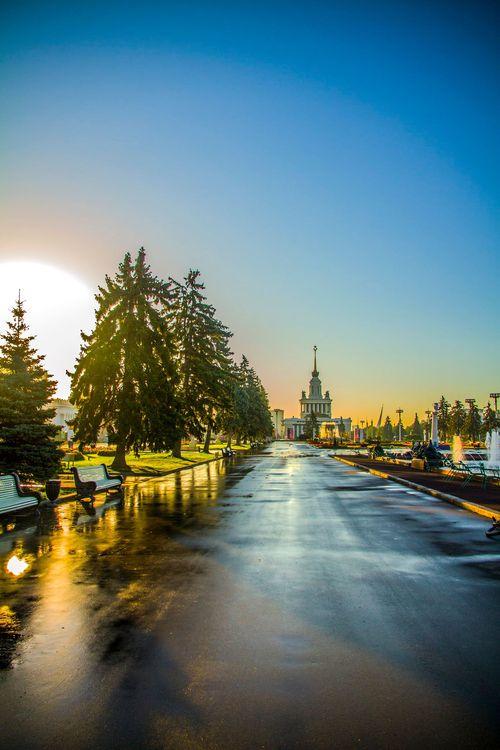 Фото Максима Малыгина