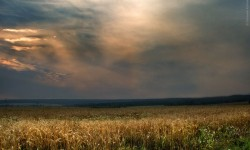 На озере Плещеево. Фото: Евгений Колков