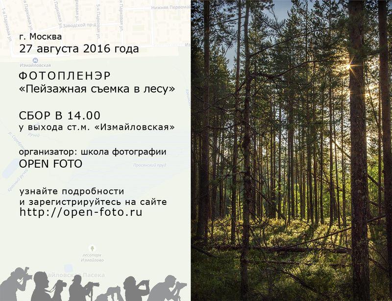 Пейзажная съемка в лесу - фотопленэр OPEN FOTO