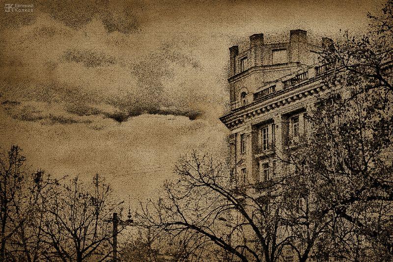 Графика московских бульваров. Фотограф - Евгений Колков
