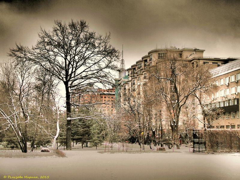 Усадьба Трубецких в Хамовниках. Фотограф - Марина Ремезова
