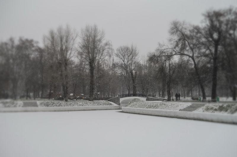 Усадьба Трубецких в Хамовниках. Фотограф - Татьяна Золотарева