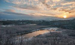 Фото: Алексей Горбунов