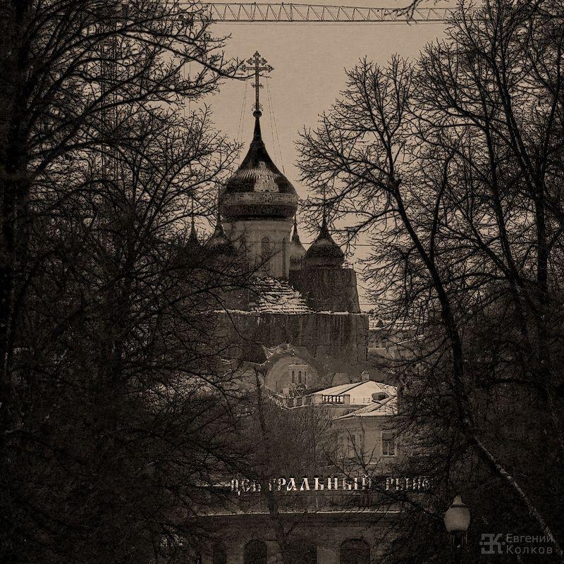 Графика московских бульваров. Фото: Евгений Колков