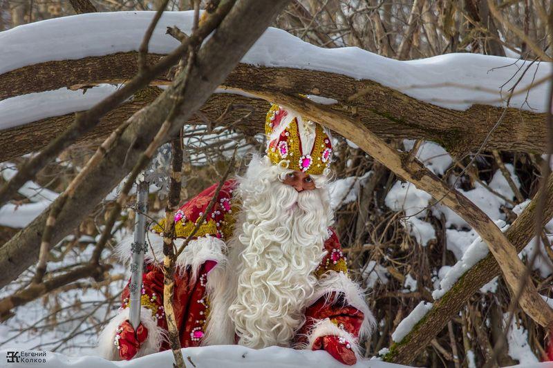 Дед Мороз. Фото: Евгений Колков