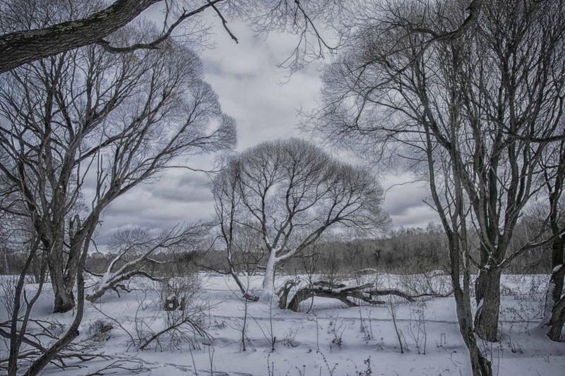 Съемка зимнего пейзажа. Фото: Анна Орлова