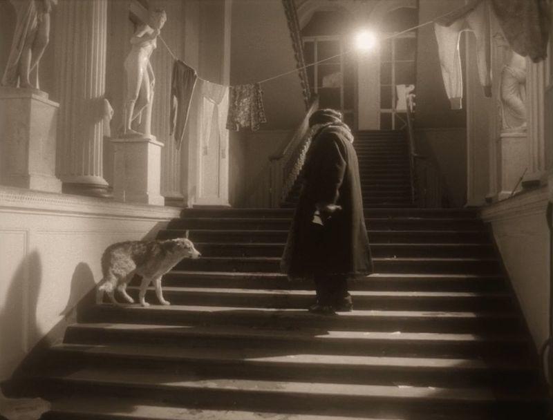 Собачье сердце. Кадр из фильма
