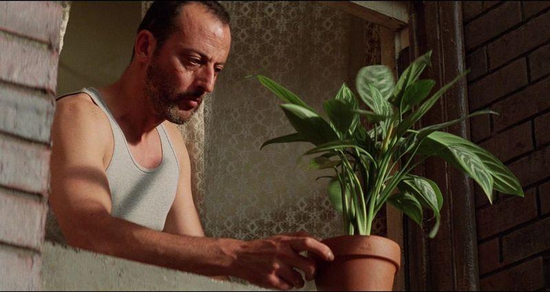 Леон. Кадр из фильма