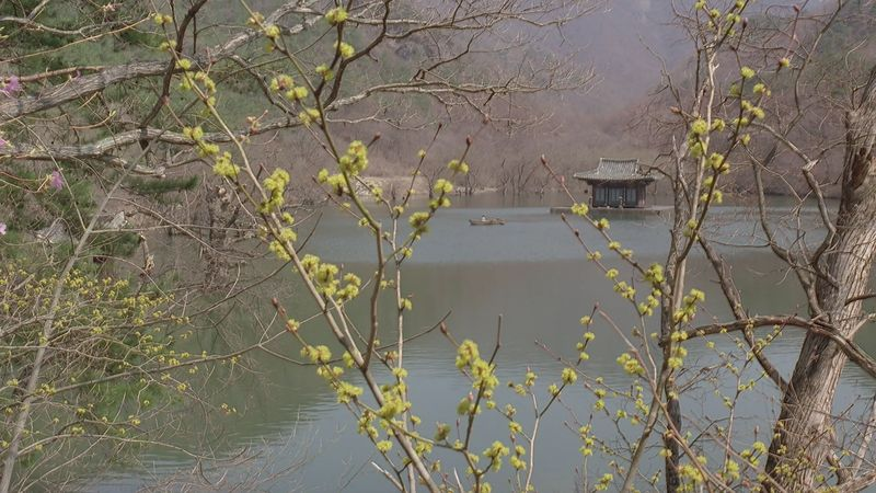 Ким Ки Дук. Весна, лето, осень, зима... и снова весна. Кадр из фильма